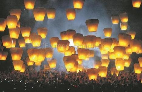 Sky lantern inquiry welcomed by WFU | News | Farmers Guardian | The Glory of the Garden | Scoop.it