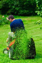 Professional Landscape Contractor In Natick, MA | Brian's Lawn Care | Professional Landscape Contractor In Natick, MA | Brian's Lawn Care | Scoop.it