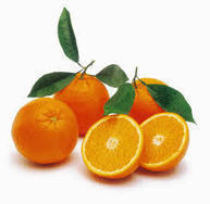 Citrus sinensis Annotation Project (CAP): A Comprehensive Database for Sweet Orange Genome | RNA-Seq Blog | Citrus science | Scoop.it