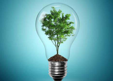 Innovation: quand les majors de l'énergie redeviennent des entrepreneurs | Economie de l'innovation | Scoop.it
