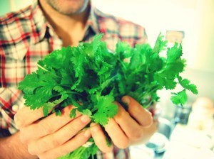 Love To Hate Cilantro? It's In Your Genes And Maybe, In Your Head | Brains & Things | Scoop.it