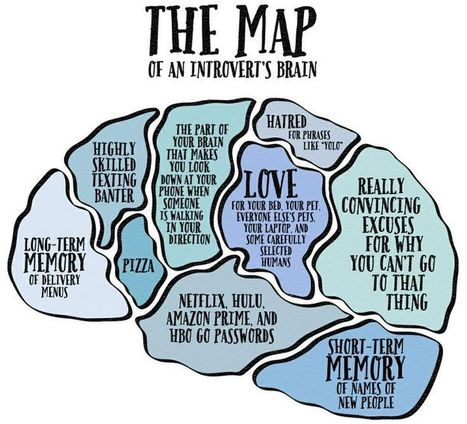 This Is What The Brain Of Every Introvert Looks Like | Psychology | Scoop.it