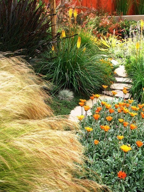 Desert Landscape Design Ideas, Pictures, Remodel, and Decor | Desert Landscaping in Peoria | Scoop.it