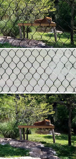 Google, MIT Researchers Create Algorithm That Deletes Reflective Windows, Chain-Link Fences from Photos | MIT Technology Review | Cool Companies, Products & Services | Scoop.it
