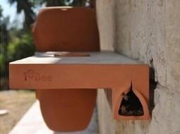 Une ruche dans la ville contre la mort des abeilles | CAP21 | Scoop.it