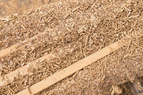 Researchers able to turn sawdust into gasoline - ScienceBlog.com | Education | Scoop.it