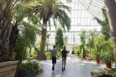 Paul Evans: We must all realise why botany and Kew Gardens really matter | Comment | London Evening Standard | Nature Flash | Scoop.it