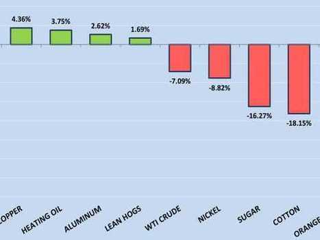 CHART: How 19 Major Commodities Performed In 2012   Looking Back At 2012   Scoop.it