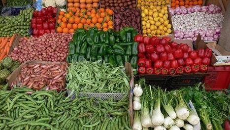 Agroalimentaire: le Maroc en mal de compétitivité | Questions de développement ... | Scoop.it