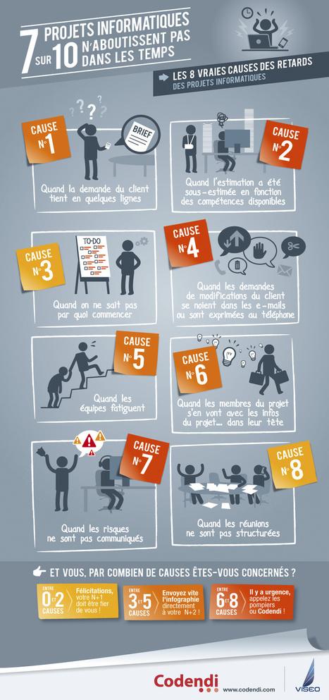 Infographie : pourquoi 7 projets informatiques sur 10 échouent | Entreprise numérique | Scoop.it