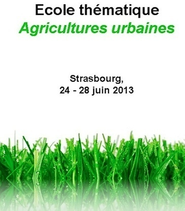 Summer school on urban agricultural development in Strasbourg ... | Agriculture Urbaine et gouvernance alimentaire | Scoop.it