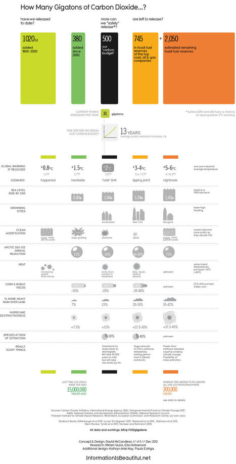 The Good Climate Change Infographic | In the NOW | Scoop.it
