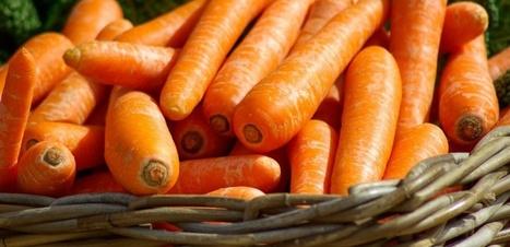 Pourquoi Carrefour drague les végétariens   Ainsi va le monde actuel   Scoop.it