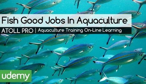 Workforce Development For The Fastest Growing Ag Sector | Aquaculture Directory | Scoop.it