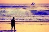 Craig Anderson - Quiksilver - Surf   Surf Competition vs Surf Values   Scoop.it