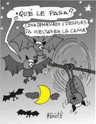 Some common linguistic mistakes in Spanish   Spanish Language Blog   EL ESPAÑOL DE AMERICA   Scoop.it