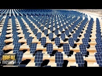 A Renewable Revolution: The Real News Interview | Sustain Our Earth | Scoop.it
