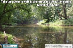 Take the power to walk in the forest and be part of nature. -- Susan Polis Schutz   Psychic Readings Source   Scoop.it