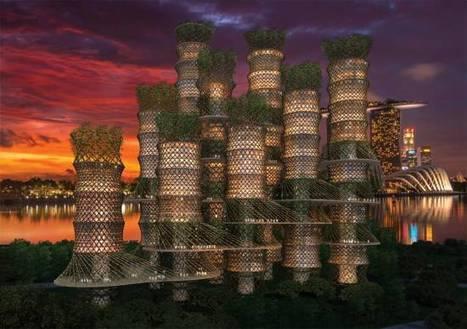 Des gratte-ciel en bambou ? | Ressources pour la Technologie au College | Scoop.it