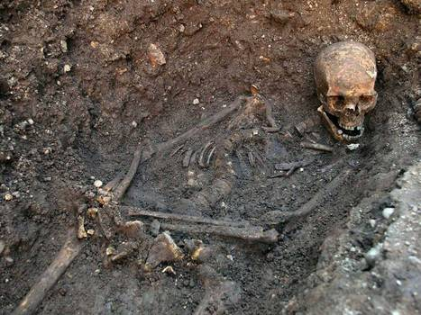 Richard III expert: The skeleton in the car park may not be the missing monarch after all | UK DETECTOR NET Latest News | Scoop.it