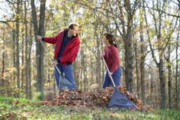 An Acknowledged Landscaper in Visalia GA - J&A Rubio Landscaping & Maintenance | J&A Rubio Landscaping & Maintenance | Scoop.it