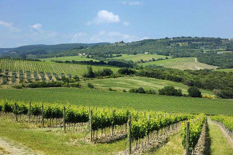 La Champagne et la Bourgogne entrent au patrimoine mondial de l ... - Le Vif   Escapade en Champagne ® Actualités   Scoop.it