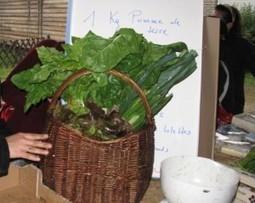Légumes en direct du paysan au citadin : toutes les Amap du Val de ... | EDEN | Scoop.it