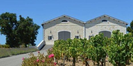 Le Médoc, entre vignes et estuaire | Revue de presse Pays Médoc | Scoop.it