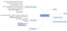 Une vidéo vaut mieux qu'un long article : le mind mapping en action | Cartes mentales | Scoop.it