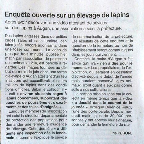Enquête ouverte sur un élevage de lapin / Ouest France   Lapins - Revue de presse L214   Scoop.it