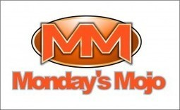 Monday Mojo: Personal Branding Tips For Success  | Shannon Cherry's Savvy Strategies Blog | The Twinkie Awards | Scoop.it