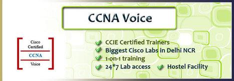 Best CCNA Voice Training Institute in Gurgaon | Delhi NCR | India | Networkers Guru | Scoop.it