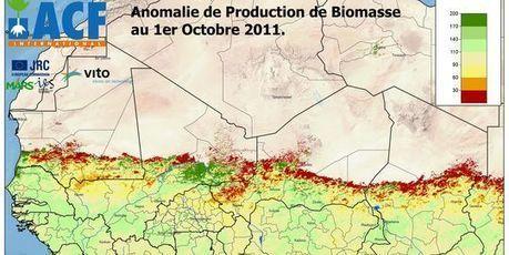 Le Sahel menacé par une crise alimentaire prévue depuis octobre - LeMonde.fr   Risques et Catastrophes naturelles dans le monde   Scoop.it
