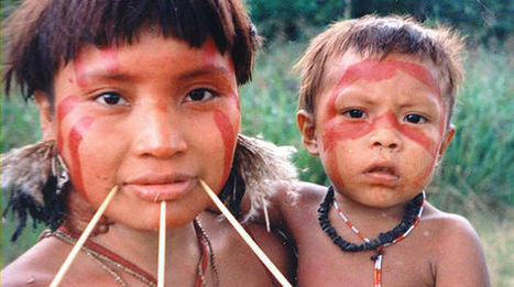 La disparition de la forêt veut dire aussi la nôtre... | Shabba's news | Scoop.it