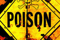Peter A Bell: Poisoned politics | Independence for Scotland, It's Coming Soon! | Scoop.it