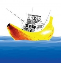 Old fishermen's tales: The curse of the banana - The Virginian-Pilot | Fun on the water | Scoop.it