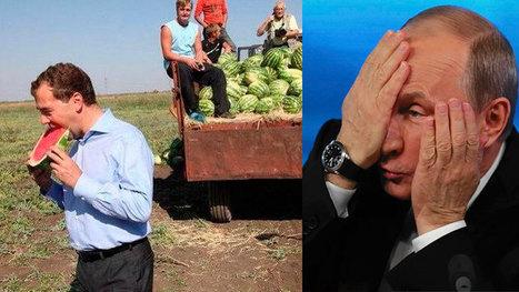 Le compte Twitter du premier ministre russe Dmitri Medvedev a été piraté   pachou39   Scoop.it