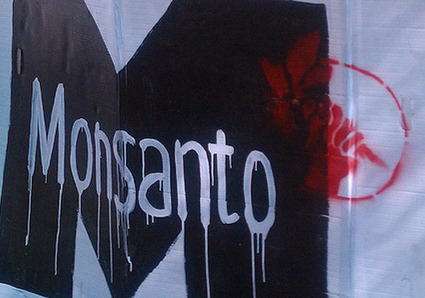 Ten Ways Monsanto and Big Ag Are Killing You—And the Planet | YOUR FOOD, YOUR HEALTH: #Biotech #GMOs #Pesticides #Chemicals #FactoryFarms #CAFOs #BigFood | Scoop.it