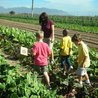 Gardening with Children to Healthy Nutrition