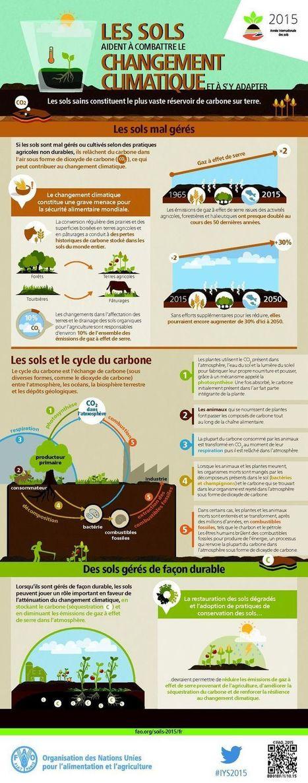 Les sols, un atout dans la lutte contre les émissions de gaz à effet de serre | Tout le web | Scoop.it