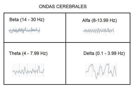 0.4 Las ondas cerebrales | PSICOLOGÍA DE LA PERCEPCIÓN VISUAL | pepe el toro es inocente | Scoop.it