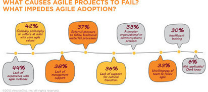 8 Reasons Why Agile Projects Fail | The Agile Management Blog | Business change | Scoop.it