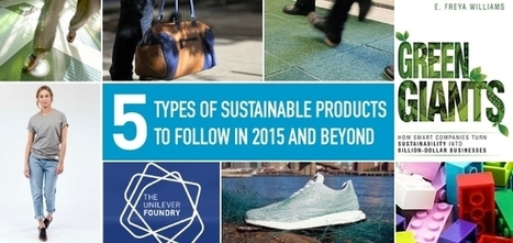5 Types of Sustainable Products to Follow in 2015 and Beyond | Sustainable Brands | Sustainable Futures | Scoop.it
