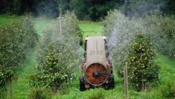 Greenpeace mit sieben Grundsätzen für eine bessere Landwirtschaft   Agrarforschung   Scoop.it