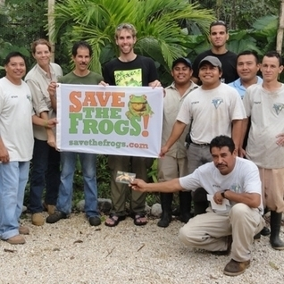 SAVE THE FROGS in BELIZE! | Belize in Social Media | Scoop.it