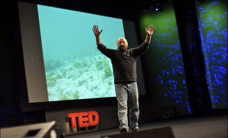 TED Weekends dives into the deep sea | TED Blog | Encounters with the ocean | Scoop.it
