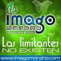 @Imagomorphoidea [mx] - Diseño Gráfico Y Creatividad Integral | Dise-ñame | Scoop.it