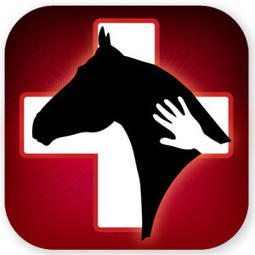 The App That Helps Horse Owners With Equine Health Information! ‹ Equestrian Horse Rider Video News Celebrity Review, HorseGirlTV | Horse Kinetics | Scoop.it