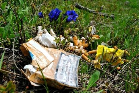 Du 8 au 10 Mai c'est le Let's Clean Up Europe ! | Développement durable en montagne | Scoop.it