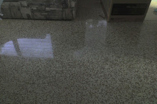Terrazzo Cleaning is definitely basically the challenge | terrazzo cleaning | Scoop.it